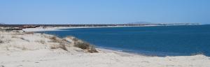 Beachfront Lots
